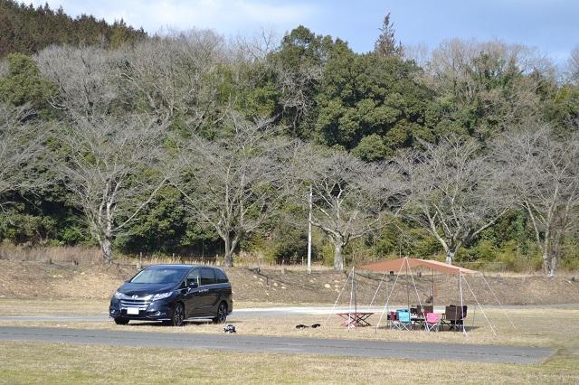 車とデイキャンプのテント