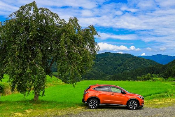 草原にオレンジの車