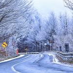霜がおりた冬の道路